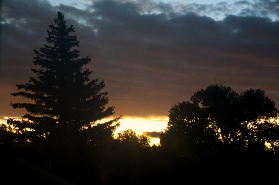 Wyo Sunrise